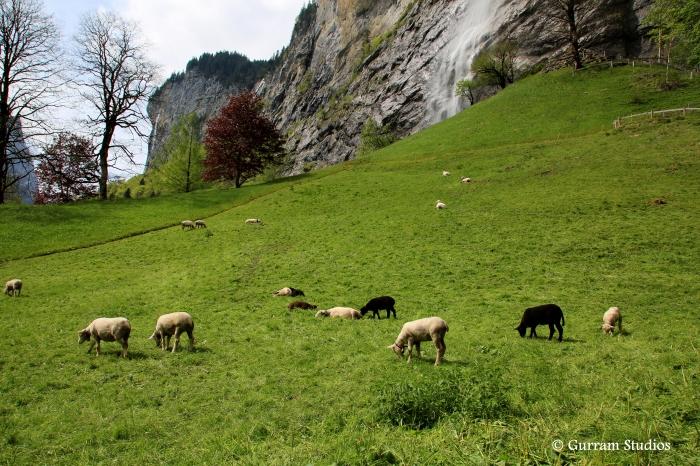 Switzerland 052